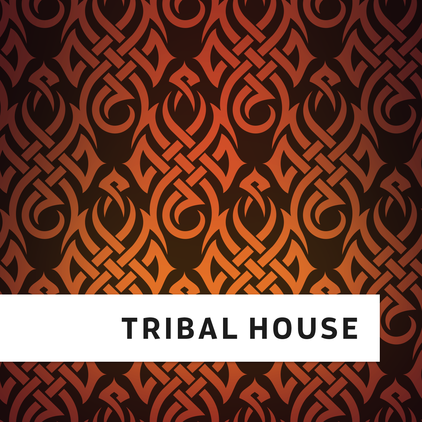 Image gallery tribal house for Best tribal house